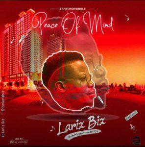 Peace of mind by Lariz Biz