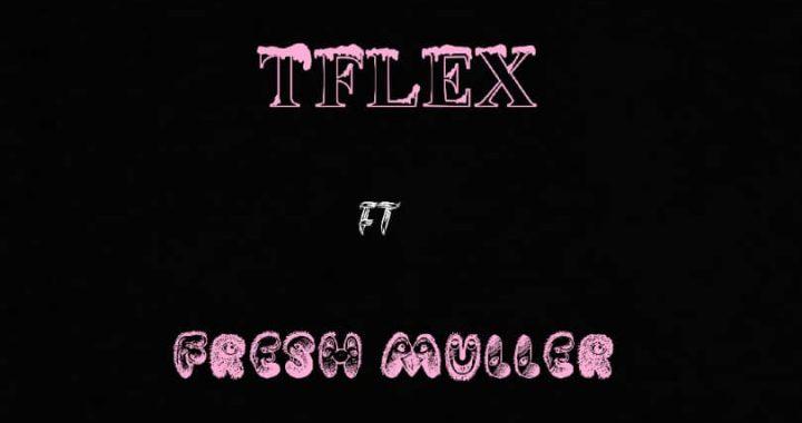 T Flex ft. Freshmuller - say no to drugs